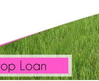success of new crop loan scheme